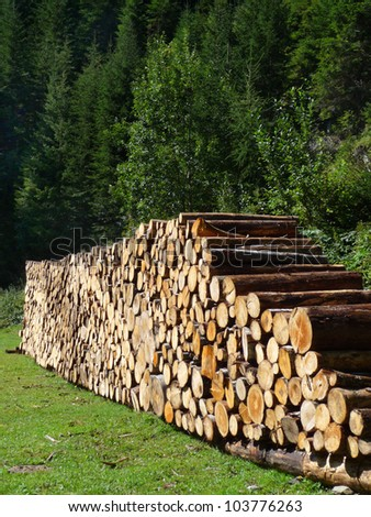 Wood pile A big wood pile in front of a green wood. - stock photo