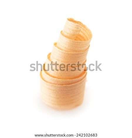 Wood shaving curl. Standing vertically. - stock photo