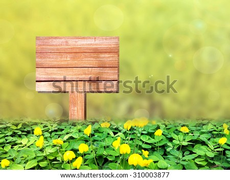 Wood sign on grass in spring background with copy space - stock photo