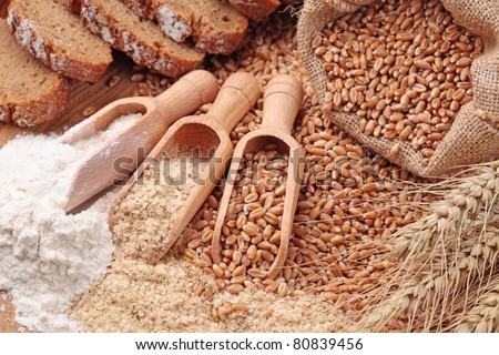 Wood spoons with whole wheat grains, wheat bran and wheat flour - stock photo