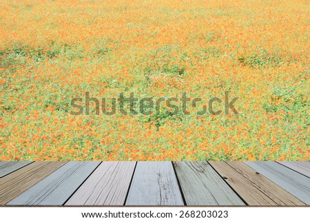 wood table over the field of blossoming marigold - stock photo