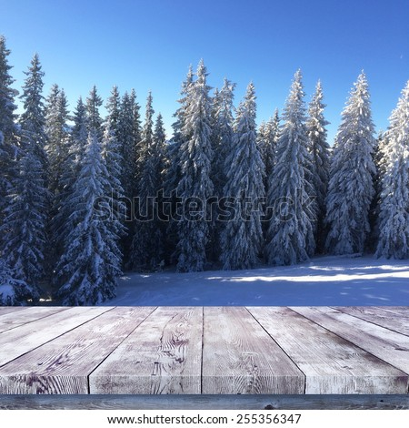 Wood table over winter forest nature background - stock photo