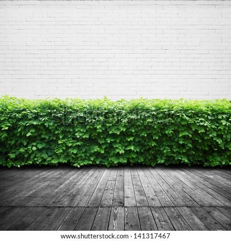 wood terrace background - stock photo