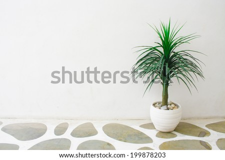 wood terrace with green plants - stock photo