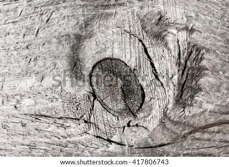 Wood texture barn board - stock photo