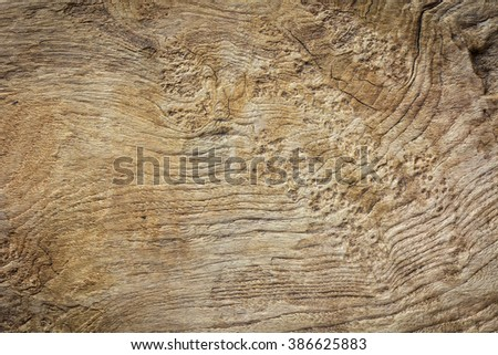 Wood texture.Eroded teak plank leaving interesting pattern texture.Wood background.Rustic wood background. - stock photo
