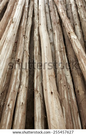 Wood texture material background  - stock photo