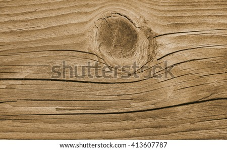wood texture. wooden texture. wooden background. wood background. wood pattern. wood wallpaper. wooden plank. wood vintage. old wood. wood rings. wooden structure. wood paneling. wood macro. oak wood. - stock photo