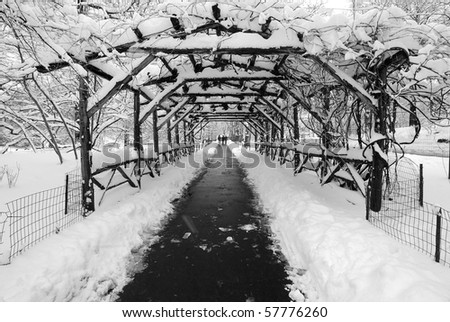 Wood Tunnel in Central Park During a Blizzard - stock photo