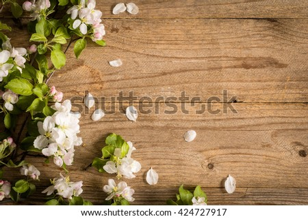 Wooden background and apple blossoms. Beautiful photo for post cards, gift cards etc. Rustic wooden background and apple blossoms. Copy space for text. Dreamy toning - stock photo