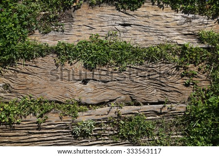wooden background with grass. - stock photo