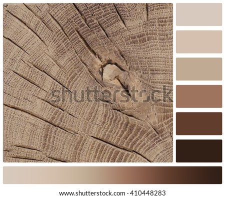 Wooden Beam Saw Cut With Cracks. Palette With Complimentary Colour Swatches - stock photo