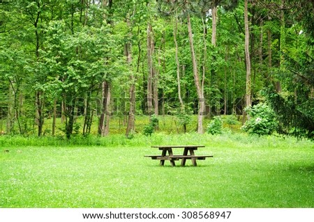 Wooden bench and table on a meadow in the forest. Summer leisure time in the park. Tranquil nature day scene. - stock photo