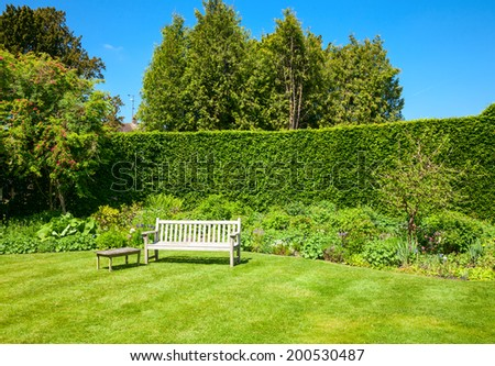 Wooden bench in a summer garden - stock photo