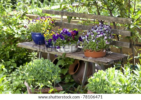 wooden bench  with flower pots in a wild garden. - stock photo