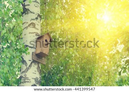 Wooden birdhouse on the birch in the sunlight  - stock photo