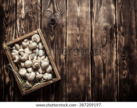 Wooden box of fresh mushrooms. On wooden background. - stock photo