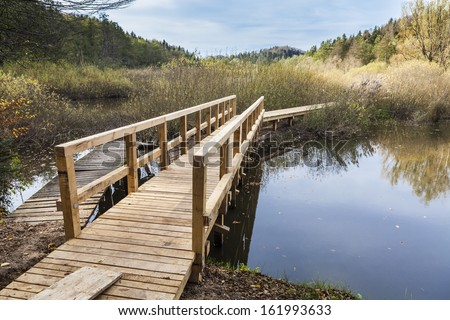 Wooden bridge across the lake in the woods  - stock photo