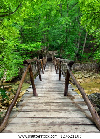 Wooden bridge in green forest. Tourist way - stock photo