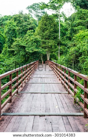 Wooden bridge in national park, Thailand. - stock photo