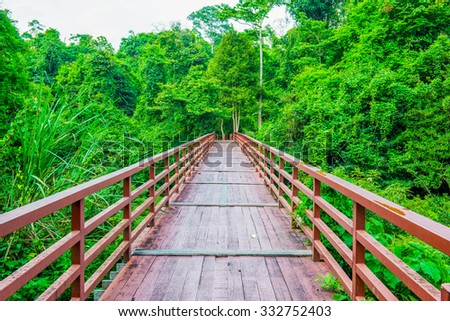 Wooden bridge in national park, Thailand. - stock photo