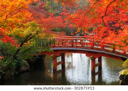 Wooden bridge in the autumn park, Japan - stock photo