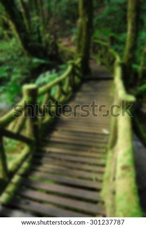 Wooden bridge in to the jungle, thailand, blur background - stock photo