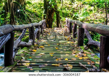 Wooden bridge in tropical rain forest at  Mae Moei National Park, Tak Province Thailand - stock photo