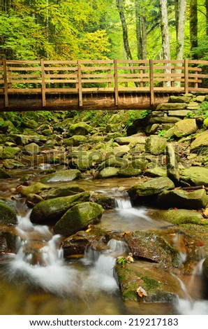 wooden bridge into the forest of casentino,italy - stock photo