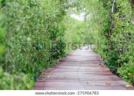 Wooden bridge leading into the park - stock photo