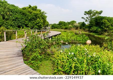 Wooden bridge through the lake - stock photo