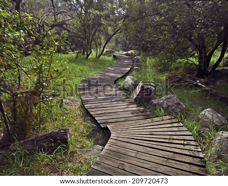 Wooden deck path into a forest - stock photo