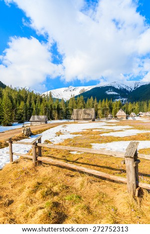Wooden fence on meadow with blooming crocus flowers in Chocholowska valley and huts in background, Tatra Mountains, Poland - stock photo