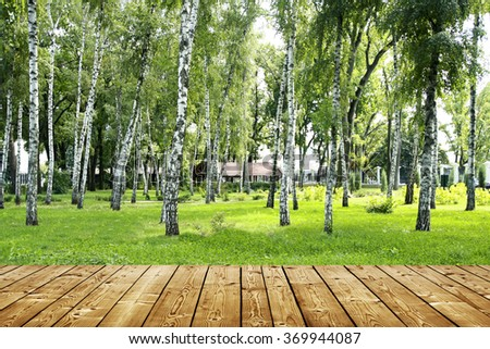 wooden floor and birch park - stock photo
