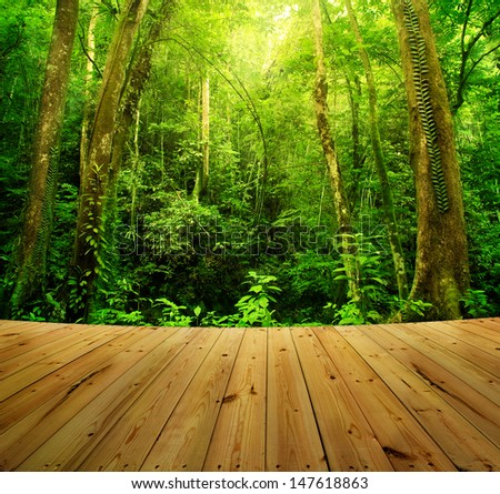 Wooden floor and Tropical Rainforest Landscape, Malaysia, Asia - stock photo