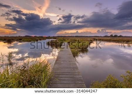 Wooden footbridge in wetland as a concept for challenge in nature reserve de Onlanden near Groningen, Netherlands - stock photo
