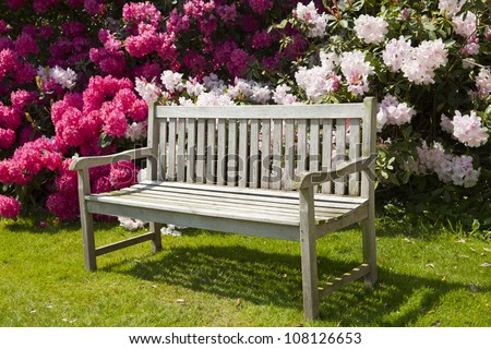 Wooden garden bench with rhododendrons. - stock photo