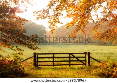 Wooden gate to a meadow with sunlight shining through the trees in a forest during Autumn. - stock photo
