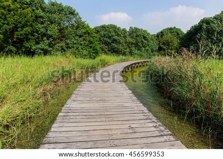 Wooden Hiking Trail - stock photo
