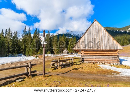 Wooden hut on meadow with blooming crocus flowers in Chocholowska valley, Tatra Mountains, Poland - stock photo