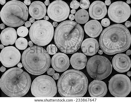 Wooden in black and white Background - stock photo