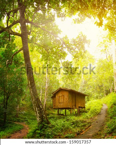 Wooden little cottage in a tropical forest. Day and sunshine - stock photo