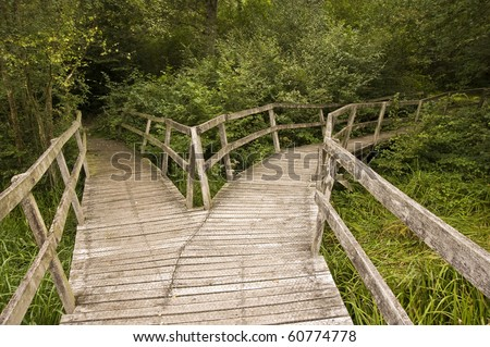 Wooden path in forest splitting into two directions - stock photo