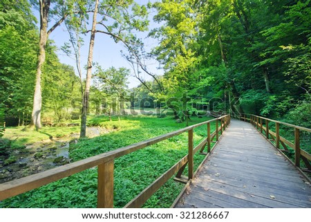 Wooden path in the nature - stock photo