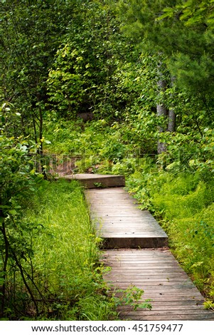 Wooden path through forest. Rushing River provincial park, Ontario Canada - stock photo