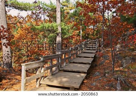 Wooden pathway around Pink Lake - stock photo