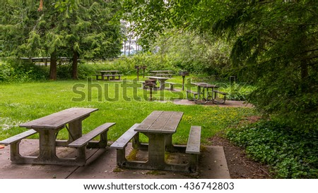 Wooden picnic tables in the forest on a green lawn. Dash Point State Park, Washington state - stock photo