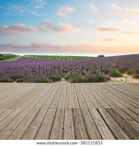 Wooden planks and lavender field at sunset, France - stock photo