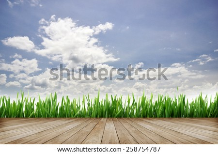 wooden platform and green grass with blue sky background - stock photo