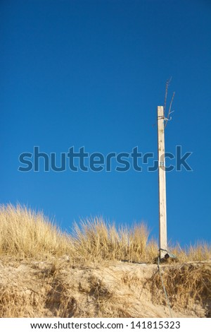 Wooden pole in the beach grass of a North Sea dune - stock photo